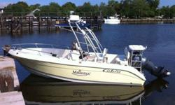 2007 Cobia (Low Hours! 4 Stroke!) FOR QUESTIONS CONTACT